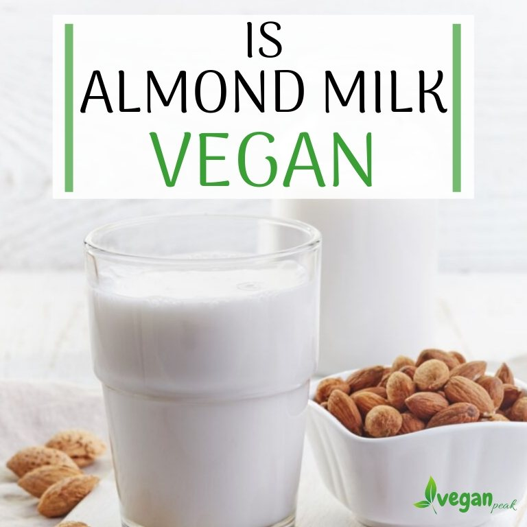 is almond milk vegan